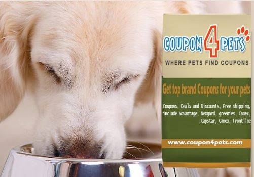 C4P BANNERS COUPON4PETS
